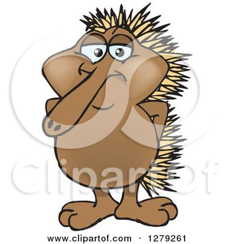 echidna clipart royalty free rf clipart illustration of a orange