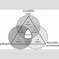 149 Plant Disease Basics The Disease Triangle