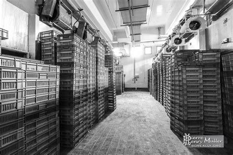 chambre froide industrielle chambre froide de stockage de matière première boreally