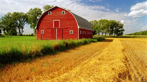 Barn Images Barn Hd Wallpaper Background Image 1920x1080 Id