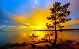 Lake Sunset Tree Landscape