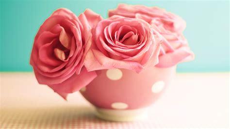 wallpaper roses   wallpaper  flowers pink mug