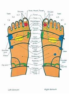 Top of feet chart   Medical Info   Pinterest   Foot chart ...