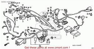 Honda Cbr250rr Mc22 1990  L  Japan Wire Harness