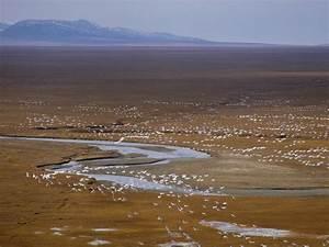 coastal plain   National Geographic Society  Plain
