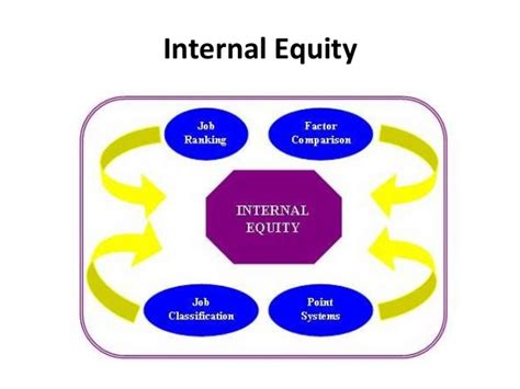 Internal Equity Pay Structures Manu Melwin Joy