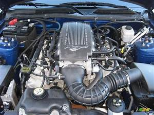 2008 Ford Mustang GT/CS California Special Coupe 4.6 Liter SOHC 24-Valve VVT V8 Engine Photo ...