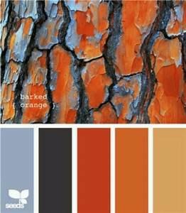 Best 25+ Orange grey ideas on Pinterest Grey orange