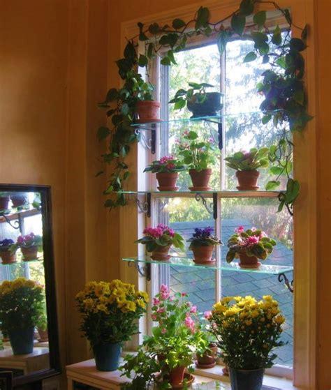 Plant Window by 15 Beautiful Window Gardens Of Me