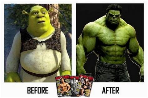 punny ripped top memes 7 before shrek after