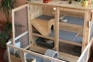 Vogelkäfig Selber Bauen : k fig ~ Lizthompson.info Haus und Dekorationen