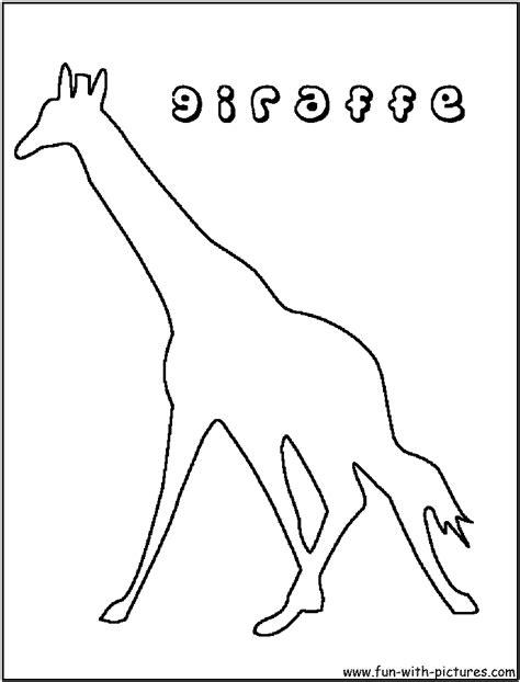 giraffe drawing outline  getdrawings