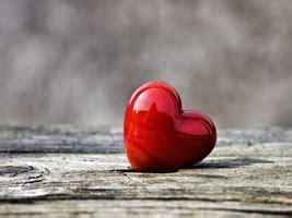 sprueche zur liebe finden sie den passenden spruch zur liebe