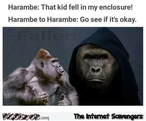 Funny Harambe Memes - funny harambe evil kermit meme pmslweb