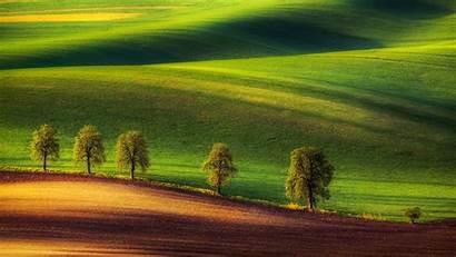Hills Ground Trees Desktop Wallpapers Mobile Backgrounds