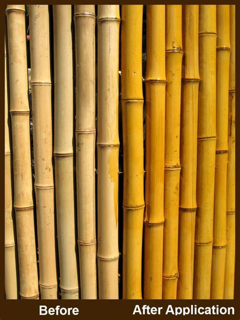 enhance  bamboo fencing  stain
