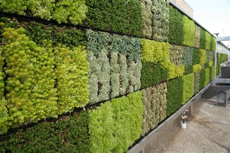 green home designs floor plans tjsl 39 s green wall is here jefferson of