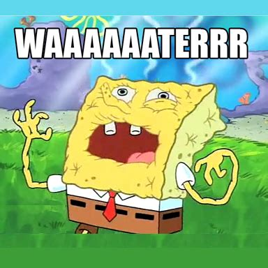 Spongebob Water Meme - what dehydrated spongebob looks like spongebob pinterest spongebob squarepants hilarious