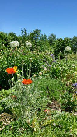 Britzer Garten Review by Britzer Garten Berlin Top Tips Before You Go Updated 2017