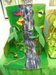 amazon rainforest  pinterest amazon rainforest