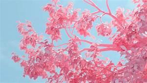 be25-tree-pink-spring-digital-art-illustration-wallpaper