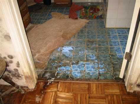 water damaged kitchen floor how to deal with the water damage of your record 7013