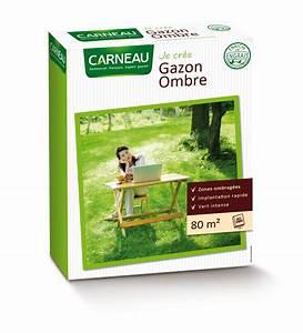 Gazon Pour L Ombre : gazon ombre adapt aux jardins ombrag s et sous bois carneau ~ Premium-room.com Idées de Décoration