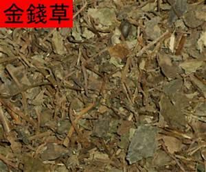 jin qian cao side effects