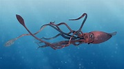 28 interesting facts about Giant Squids - Factins