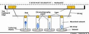 Chromatography  Methodology   Procedure  Marz Chemistry