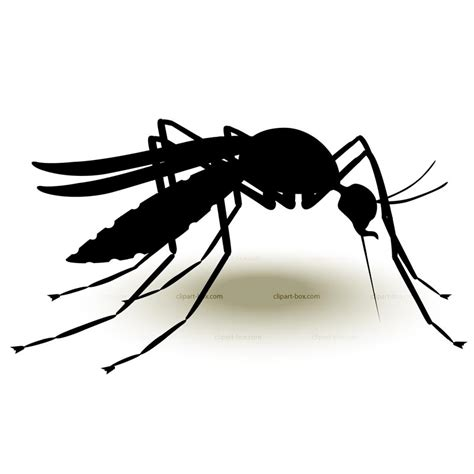 Mosquito Clip Vector Mosquito Png Studio Design Gallery Best Design