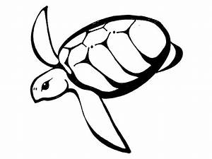 Turtle Outline - AZ Coloring Pages