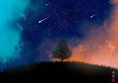 Shooting 4k Stars Tree Night Background Falling