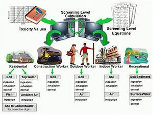 Regional Screening Levels  Rsls