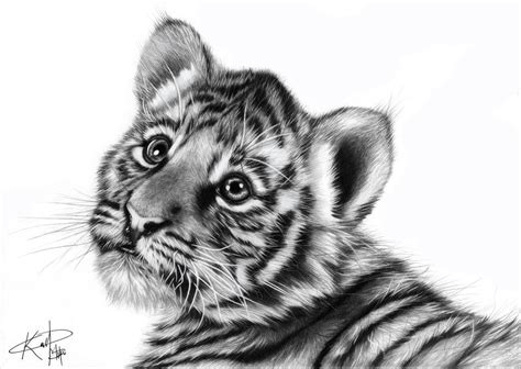 realistic baby animals google search art realistic