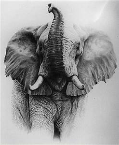 Good drawing of elephant with its trunk up. | Tattoo Ideas ...