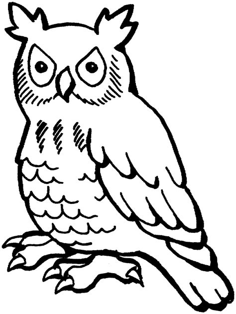 Coloring Owl by Free Owl Coloring Pages