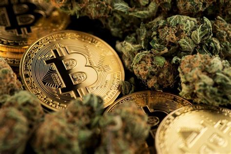However, the company ranks as one of the top leaders in the u.s. Bitcoin to Cannabis: Chinese Crypto Investor Pivots to Chase Higher Yields