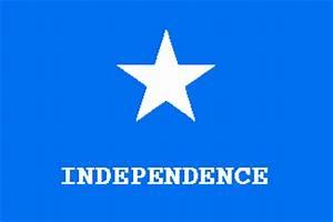 Historical Texas Flags