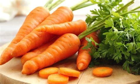 แครอท ผักสีส้มสวยที่มากไปด้วยคุณค่าจากเบต้าแคโรทีน ที่ช่วย ...