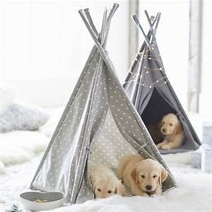 northfield canvas pet teepee pbteen With dog and teepee