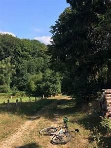 Großer Segeberger See : mountainbike vom alstertal bers travetal zum gro en segeberger see tour 164867 ~ Yasmunasinghe.com Haus und Dekorationen