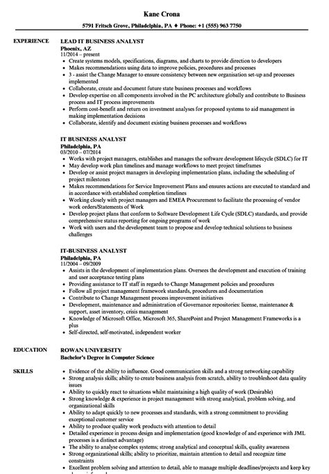 Business Analyst Resume by It Business Analyst Resume Sles Velvet