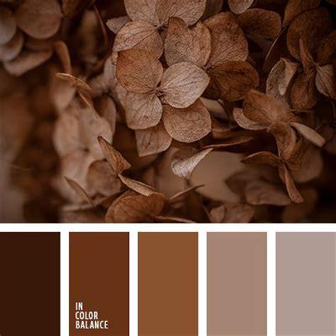 best 25 brown color schemes ideas on pinterest living