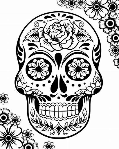 Dead Coloring Skulls Pages Printable