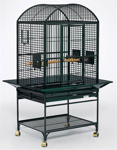 bird cages avian adventure cagessimbads birds pets