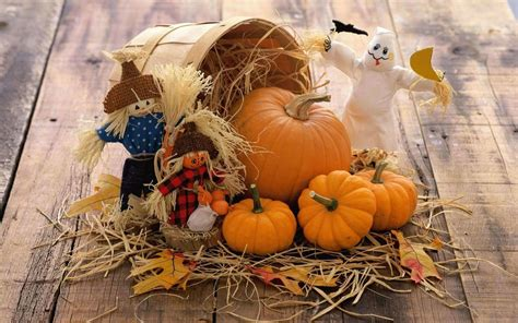 Fall Backgrounds Pumpkins by Fall Wallpaper Backgrounds With Pumpkins 55 Images