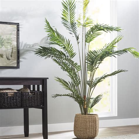 beachcrest home paradise palm tree floor plant  pot