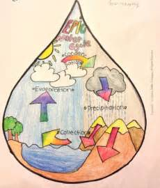 The Water Cycle  As Drawn In A Droplet Of Water  By Esther