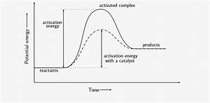 Activation Energy And Catalyst